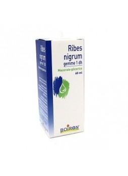 3 CONFEZ. BOIRON RIBES NIGRUM MACERATO GLICERICO 60ML (180 ml TOT)