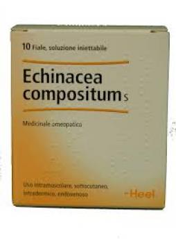 HEEL Echinacea Compositum S 10 Fiale
