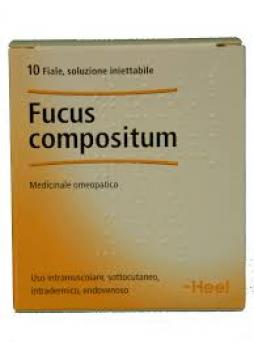 HEEL Fucus Compositum 10 Fiale