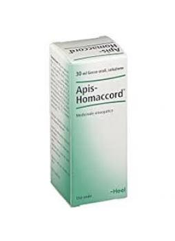 Heel Apis Homaccord Gtt 30 ml Guna