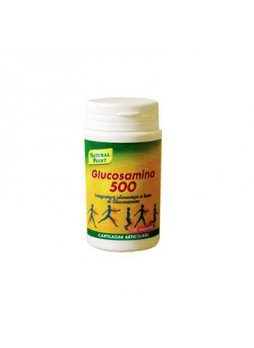 Glucosamina 500 100 capsule
