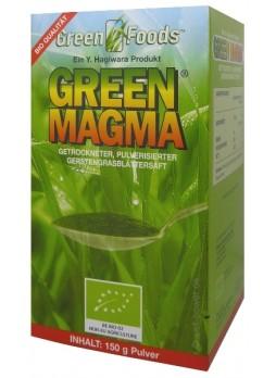 Green Magma polvere 150g