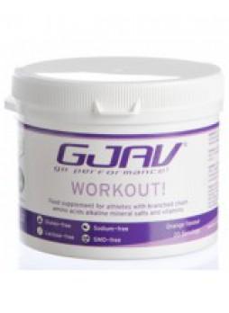 Gjav Workout Arancia 200g